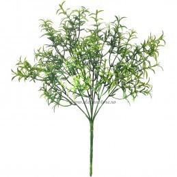 Buchet 7 crengute cimbru verde 32 cm