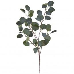 Creanga eucalipt gigant 93 cm