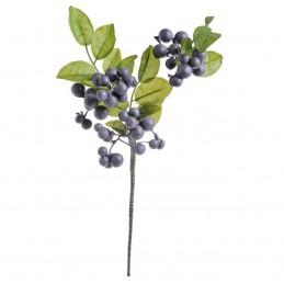 Crenguta Blueberry 38 cm
