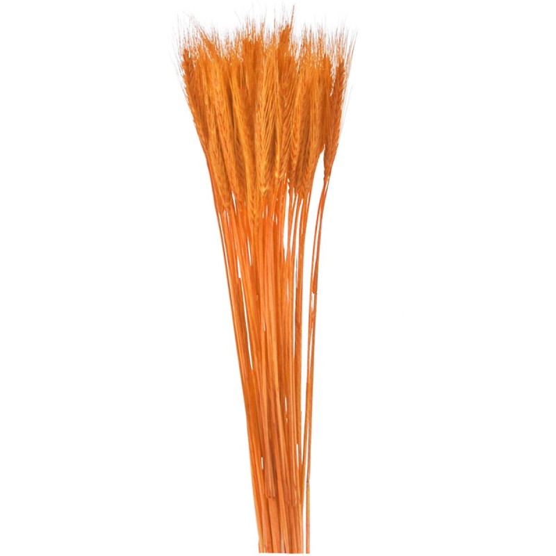 Spice de grau portocalii 65cm, 150g