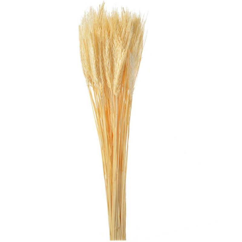 Spice de grau natur 65cm, 150g