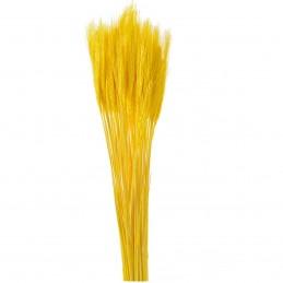 Spice de grau galbene 65 cm