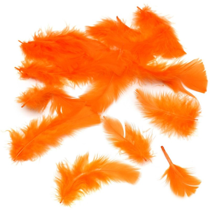 Pene portocalii 10 grame