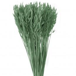 Ovaz verde inchis 60cm, 150g