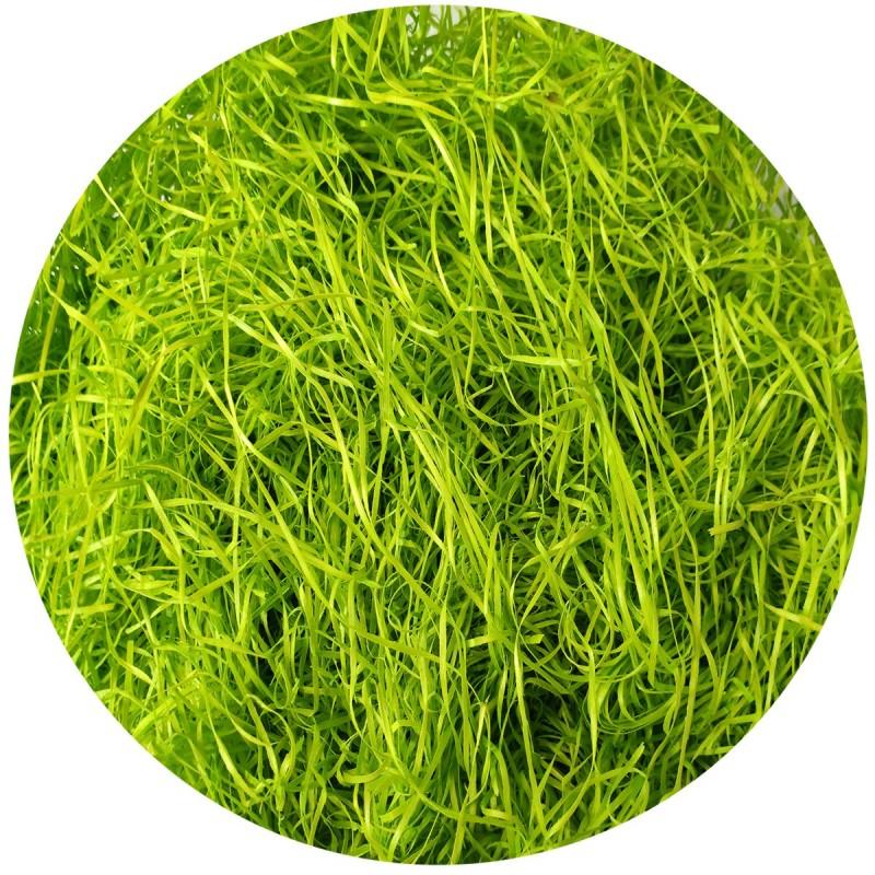 Fibra din lemn voluminoasa verde 250g