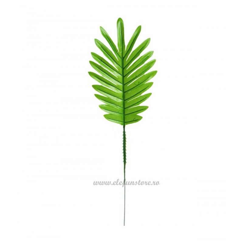 Frunza de Palmier Verde Deschis 38cm