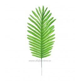 Frunza de Palmier Verde Deschis 46cm
