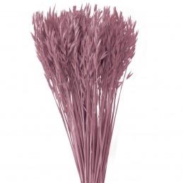 Ovaz roz vintage 60cm, 150g