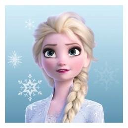 Prosop Elsa, Frozen 30*30 cm