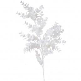 Creanga alba de eucalipt cu...