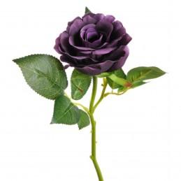 Trandafir mov cu coada...