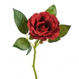 Trandafir rosu cu coada...