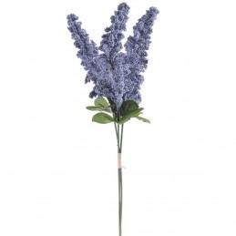 Amaranthus bleu, 3fire 35cm