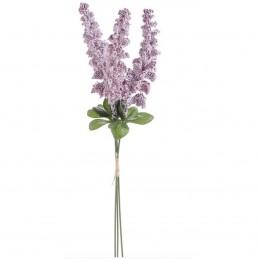 Amaranthus lila, 3fire 35cm