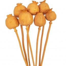 Mac peach vopsit 50cm, 50g