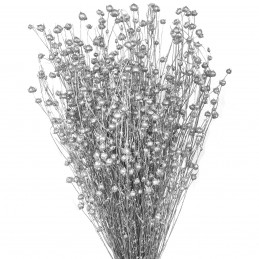 In argintiu, plante uscate...