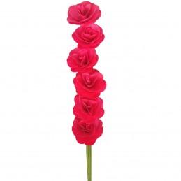 Set 6 Begonii rosii din...
