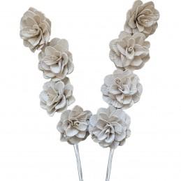 Set 8 Flori Acacia alb...