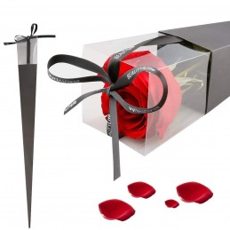 Con rosu pt un trandafir, cutie 40 cm