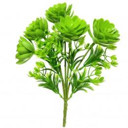 Buchet 5 crengute plante...