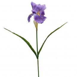 Fir iris mov 61 cm
