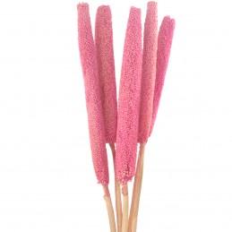 Babala roz 65cm, 5 fire