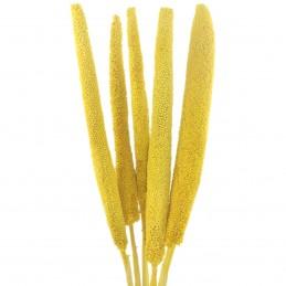 Babala galben 65cm, 5 fire