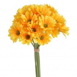 Set 9 fire 36 crizanteme...