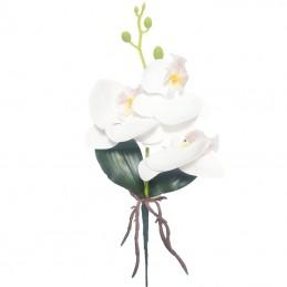 Orhidee alba cu frunze, 3...