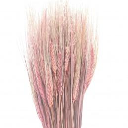 Spice de grau roz vintage 60cm