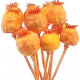 Mac portocaliu vopsit 35cm