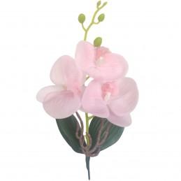 Orhidee roz cu frunze, 3...