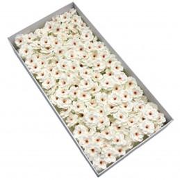 Set 50 Flori de Cires albe...