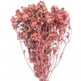 Sofran roz vintage 60cm,...