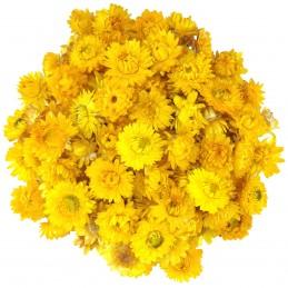 Flori de pai galbene 3-4cm,...