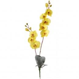 Orhidee galbena 8 cupe cu...