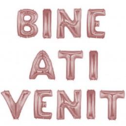 Set Litere Bine Ati Venit...