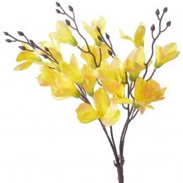 Buchet magnolie galbena 5...