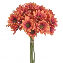 Set 9 fire 36 crizanteme de...