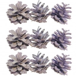 Conuri de brad vopsite lila...