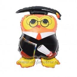 Balon Absolvire Doctor Owl