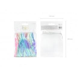Ghirlanda 12 Mini Tassels Pastel Iridiscent 1.2m