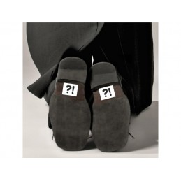 Set 2 Stickere Pantofi ?!