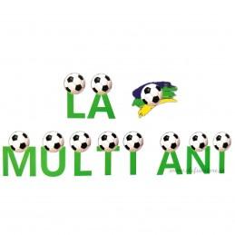 Banner La Multi Ani Fotbal