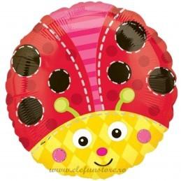 Balon Rotund Buburuza