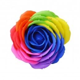 Set 9 Trandafiri de Sapun Multicolori