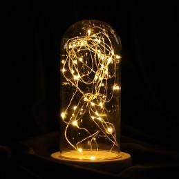 Ghirlanda 20 Micro-Led cu lumina calda 2m