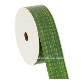 Rola Aspidistra Verde 2cm x 100m